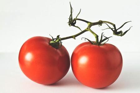 トマトの冷蔵保存方法は?ヘタを下向きにすると良いって本当?