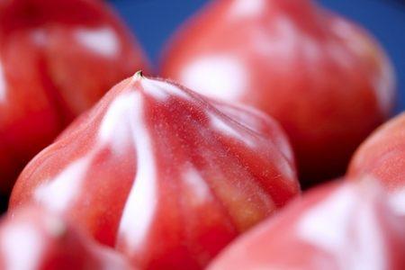 昔ながらのトマト!ファーストトマトの魅力とは?