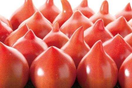 幻のトマト?ルネッサンスの味や形の特徴は?
