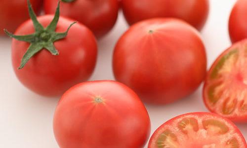 高糖度トマトのアメーラの魅力と特徴は?