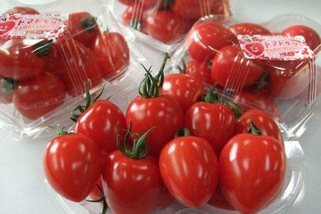 まるで苺?トマトベリーの味などの特徴は?